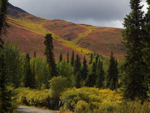 Tombstone Campground -> Dempster Highway (Kanada)