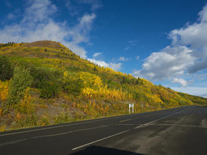 Herbstliches Farbenmeer -> Haines Road (Kanada)